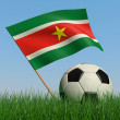 Soccer ball in the grass and the flag of Surinam — Stock Photo #5110793