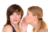 Two gossips — Stock Photo