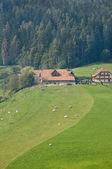 Farm on a hill — Stock Photo