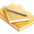 Foto Stock: Golden notebook with silver pen