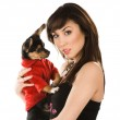 Beautiful woman with little dog — Stock Photo #2821969