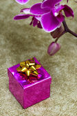 Gift box with purple orchid — Stockfoto