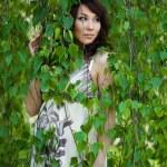 Beautiful girl in a birchwood — Stock Photo #2833831