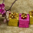 Gift boxes with purple orchid — Stock Photo