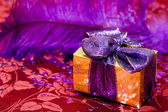 Gift box with violet feather — Stockfoto