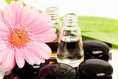 Spa essentials (stones with flower and bottles of oil) — Stock Photo