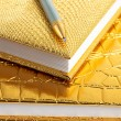 Golden notebooks with silver pen — Stock Photo
