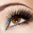 Close-up of beautiful womanish eye — ストック写真