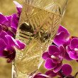 Glass with champagne and orchid — Stok fotoğraf