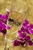 Vidrio con champán y orquídea — Foto de Stock