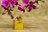 Boîte de cadeau avec orchidée pourpre — Photo