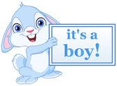 Bébé lapin — Vecteur