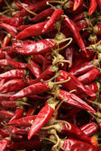 Red paprika — Stock Photo