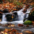 Tranquil falls — Stock Photo #3083219