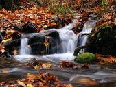 Tranquil falls — Stock Photo