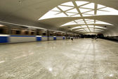 Velocità ferroviaria sulla piattaforma undeground — Foto Stock