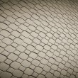 Stock Photo: Pave stones of sidewalk