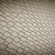 Pave stones of sidewalk — Stock Photo