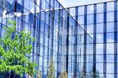Budynki ze szkła i kwitnący jabłko — Zdjęcie stockowe