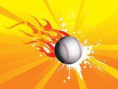 Grunge fire with cricket ball — Stockvektor