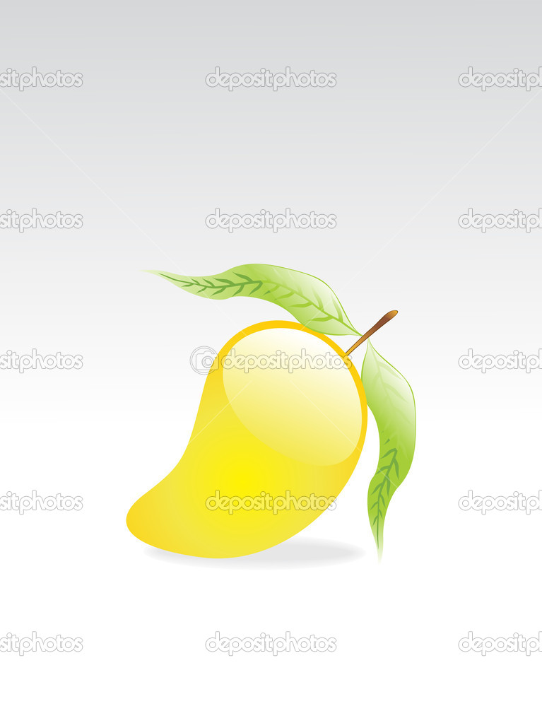  illustration of isolated glossy mango fruit and leaf with grey background  Stock Vector #2839360