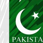 Dirty pakistan national flag — Stock Vector #3024869