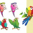 Vector collection of parrot — Stock Vector