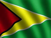 Patriotic shiny Flag of Guyana — Stock Photo