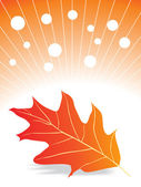 Vector autumn leave with fog — Stock Vector
