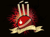 Vector illustration of cricket background — Stock Vector