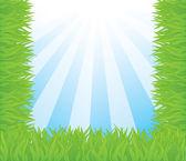 Summer vector background with grass — Cтоковый вектор