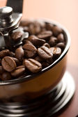 Roasted coffee beans in coffee grinder — Stock Photo