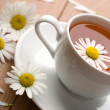 Stock Photo: White cup of herbal teand camomile flowers