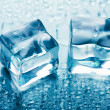 Melting ice cubes — Stock Photo #3565148