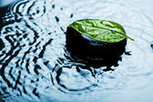 Spa stone on leaf in water — Stock Photo