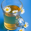 Stock Photo: Camomile teover blue