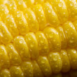 Stock Photo: Macro of fresh maize corns