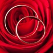 Gold wedding rings over red rose — Stock Photo