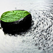 Spa stone and leaf in water — Stock Photo