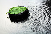Spa stone and leaf in water — Stock fotografie
