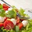 Salad with tomatoes and mozzarella - Stock Photo