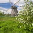 Spring landscape with windmill — Stock Photo