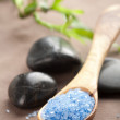 Herbal salt and spa stones — Stock Photo #3609136