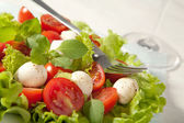 Salad with tomatoes and mozzarella — Foto Stock