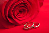 Gold wedding rings and red rose — Stock Photo