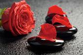 Wellness stones en rose over zwart — Stockfoto