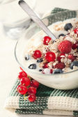 Yogurt with cereal and wild berries — Stock Photo