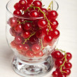 Stock Photo: Redcurrant berries