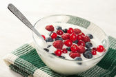 Yogurt with wild berries — Stock Photo