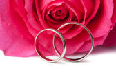 Gold wedding rings and pink rose isolated — Stock Photo